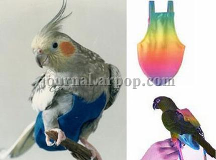 Подгузники для попугая