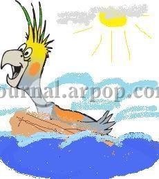 Аквалангисты спасли попугая